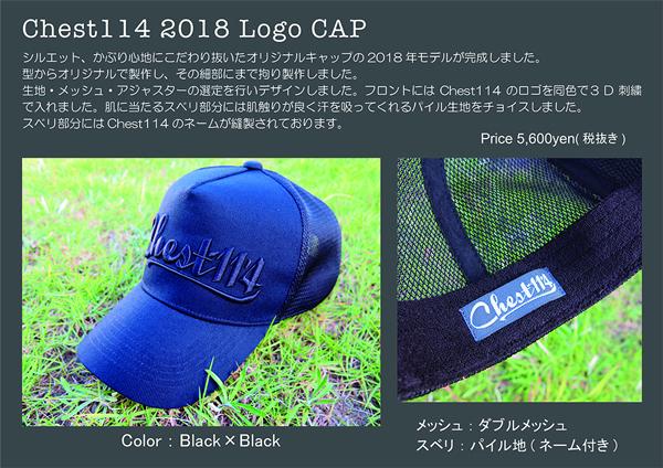 2018LogoCAP.jpg