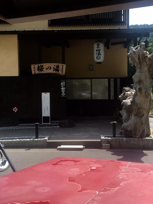 桜温泉.jpg