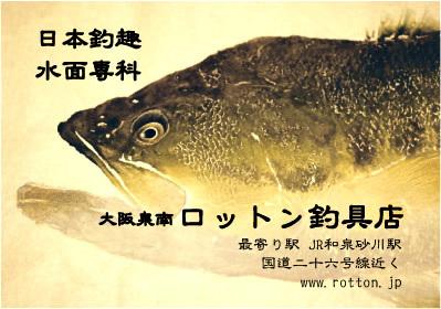 rotton.ad.jpg